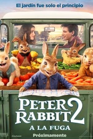 Póster Peter Rabbit 2: A la fuga