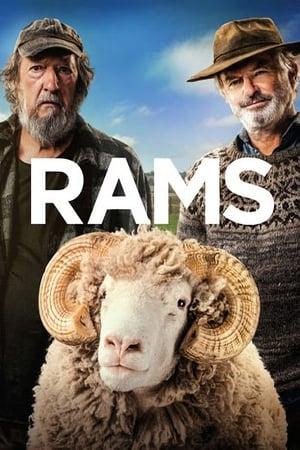 Póster Rams